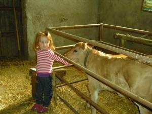 Gioa e vitello